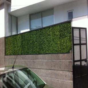 Muros Verdes 10