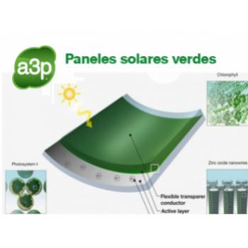 Paneles solares verdes